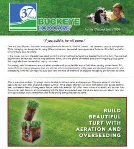 buckeye-newsletters